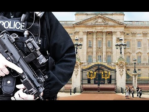 Buckingham Palace in armed police stand off after US tourist attacks officers