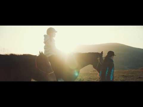 Morning Sunrise With Horses || Blackmagic Pocket Cinema Camera 4k