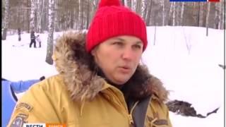 Снежный псы - 2014