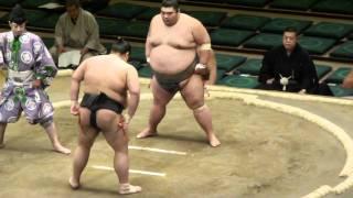 九重部屋の千代丸の相撲です。 前の場所では初の幕下上位を経験しました...