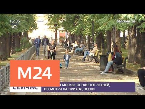 Комфортная погода ожидается в Москве в начале сентября - Москва 24