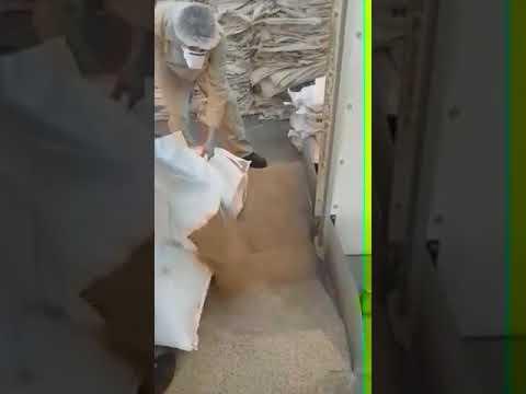 Sesame Seed Cleaning Line   Olam   Turkey