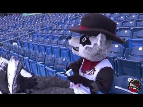 Baseball is Coming - Quad Cities River Bandits