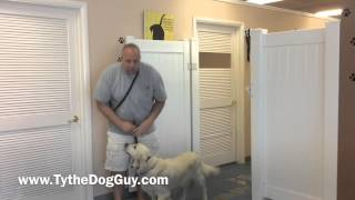 How To Get Your Dog To Not Rush Out The Door- 801-895-2731