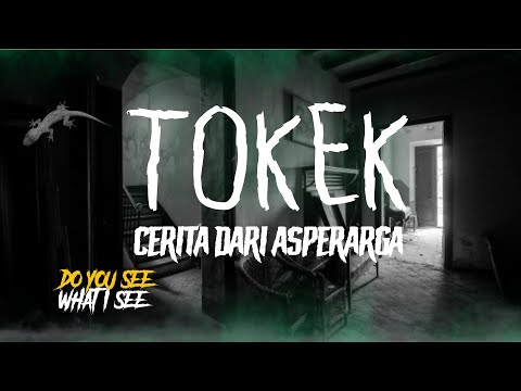 TOKEK   Cerita Horor #331