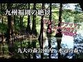 九州福岡の絶景☆「ジブリ?」「もののけ姫?」とネットで話題の場所☆九大の森内水辺の森
