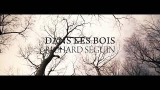 Richard Séguin - Dans les bois (vidéoclip officiel)