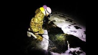 Нашли замерзшую лужу. СПАСЕНИЕ КАРАСЯ,САЗАНА. Рыбалка зимой 2018