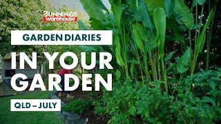 Gardening in July | QLD | Bunnings Garden Diary