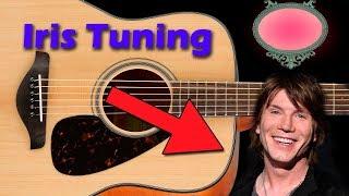 iris guitar tuning goo goo dolls - b d d d d d