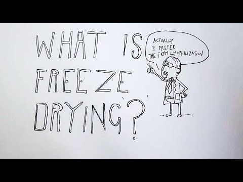 What is Freeze Drying?