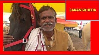 10 लाख कीमत घोडी : घोड़ों के पालन के बारे में जानकारी : Horse Care & Information