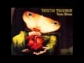 Infected Mushroom - Suliman (Unreleased Version)