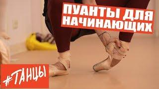 Пуанты для начинающих. Упражнения от балерины Анастасии Лименько