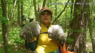 산삼나라의 2017년 5월 19일 백두산 자작나무 종말굽버섯 산행기 입니다.