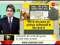 DNA: Know about the history of fireworks and crackers