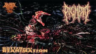 Pighead - Rotten Body Reanimation (2012) {Full-Album}