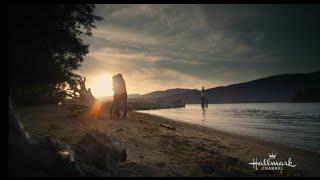 Grace and Cliff | Cedar Cove Season 3