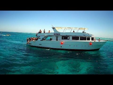 Meraki Resort (Egipet Hurghada)  Part 4 Delfins