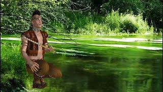 Flauta Indígena Nativa & Chuvas no Bosque (Anti-stress e Anti-insônia)