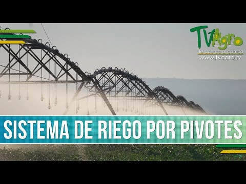 Que es el Sistema de Riego por Pivotes – TvAgro por Juan Gonzalo Angel