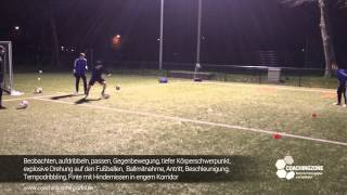 Fussballtraining: individuelles Training mit Lewis Holtby