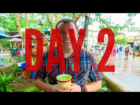 DISNEY WORLD 2015 VLOG: DAY 2 - Animal Kingdom/Hollywood Studios