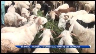 Parakou/Tabaski : morosité sur les marchés de vente de bétail