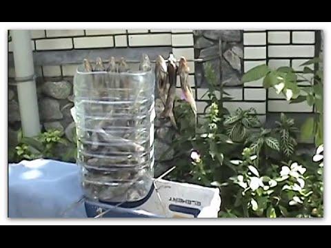Как сделать сушилку для рыбы с вентилятором
