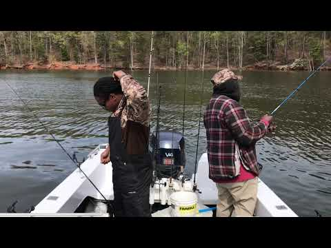 The Easiest Way To Catch White Perch (catching Over 100)