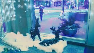 Vancouver Merry Christmas 溫哥華聖誕節 | Canada 加拿大 | 聖誕夜 | 溫哥華冬天 Winter in Vancouver Snow | 落雪