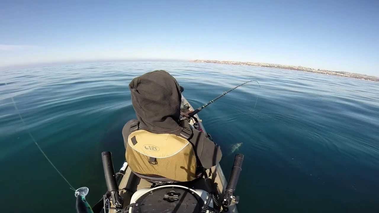 Dana point kayak fishing youtube for Fishing dana point