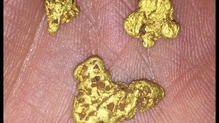 Metal Detecting for Gold Nuggets in Victoria. Minelab GPZ 7000