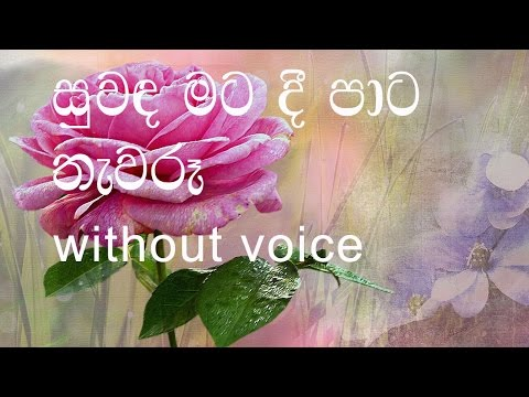 Suwanda Mata Dee Karaoke (without voice) සුවඳ මට දී පාට තැවරූ