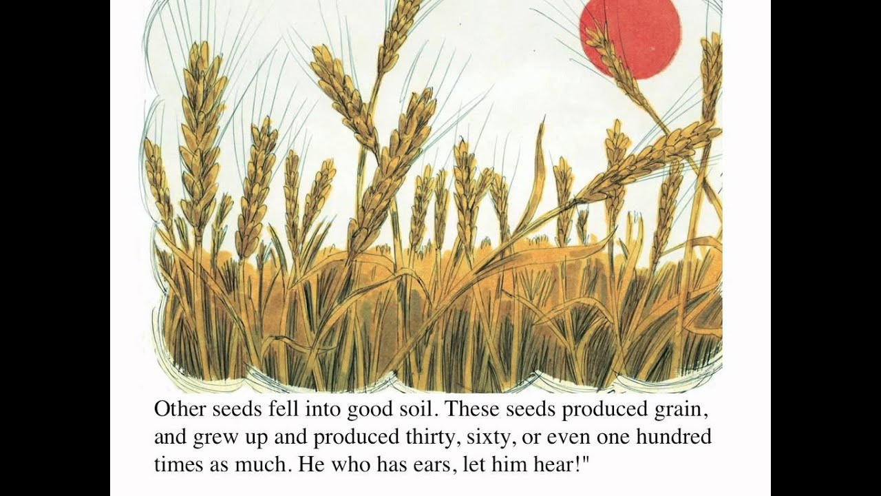 The Parable of the Sower and the Seed - YouTube