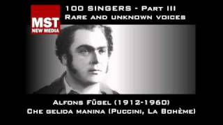 Part III: Rare and unknown voices - ALFONS FÜGEL