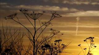 Faruk Sabanci - Emotional Outburst (Original Mix)