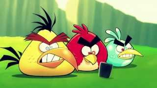 Angry Birds - Funny Video