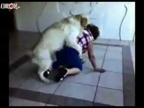 GIRL and HORSE Compilation 2014 - hermosa chica y caballos - مثير للفتيات from YouTube · Duration:  3 minutes 44 seconds