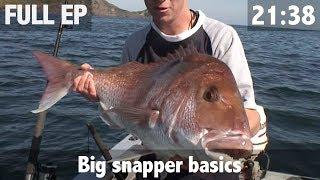 Classic Episode Big Snapper Basics
