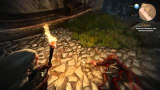 Ведьмак 3: Дикая Охота - Тирион Ланнистер в небесной камере