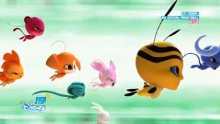 Miraculous Ladybug  Kwami Buster  Capitulo 21  Español de España  Completo  Temporada 3