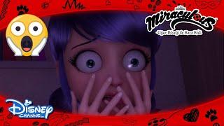 Mucize: Uğur Böceği ile Kara Kedi I Marinette'nin Kabusu 😧I Disney Channel TR