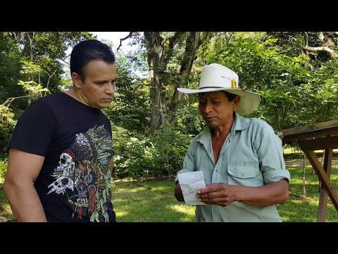 Copan Ruinas, Travel Honduras, Travel Vlog, Maya Archeological site