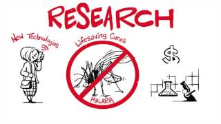 The Value of Basic Scientific Research thumbnail