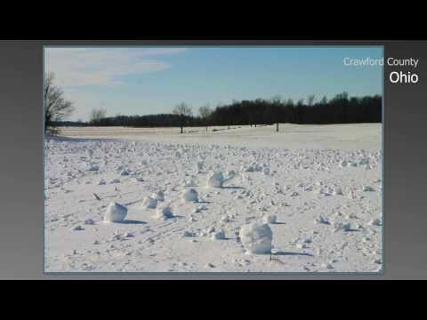 Snow Rollers January 28, 2014 Crawford County Ohio