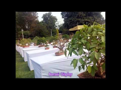 Agri Horticultural Annual flower show Part 2 Bonsai