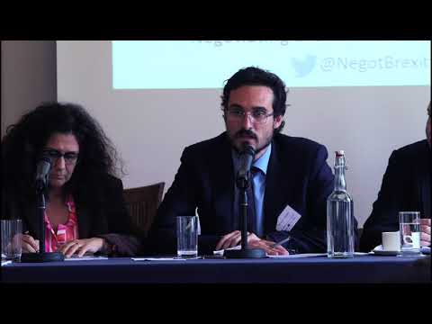'Negotiating Brexit' conference, 20 October 2017. Panel 3: Ireland, the UK, Spain and Greece