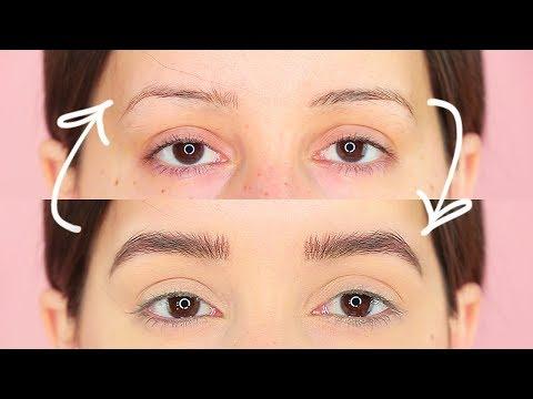 How I Grew Out My Eyebrows!   Tashaleelyn