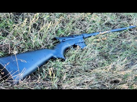 .22 For Survival? Henry AR 7  Vs. Marlin Papoose
